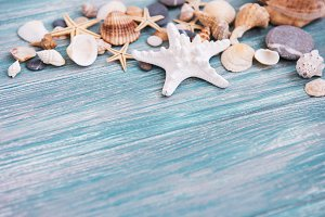 sea shells on a  wooden table