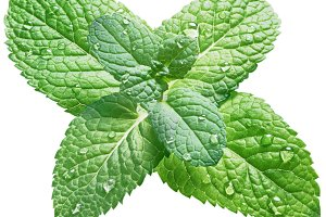 Spearmint or mint leaves with water