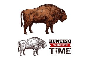 Hunting vector sketch buffalo