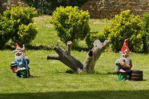 littles gnomos in the green garden