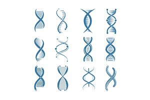 DNA icons. Genetic biology human