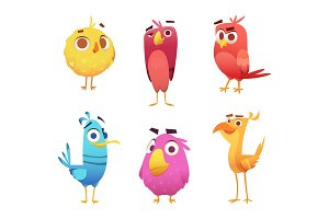 Angry cartoon birds. Chicken eagles