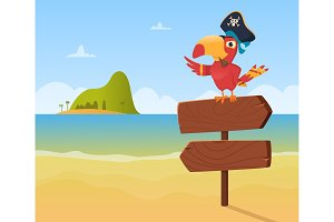 Pirate parrot. Funny colored bird