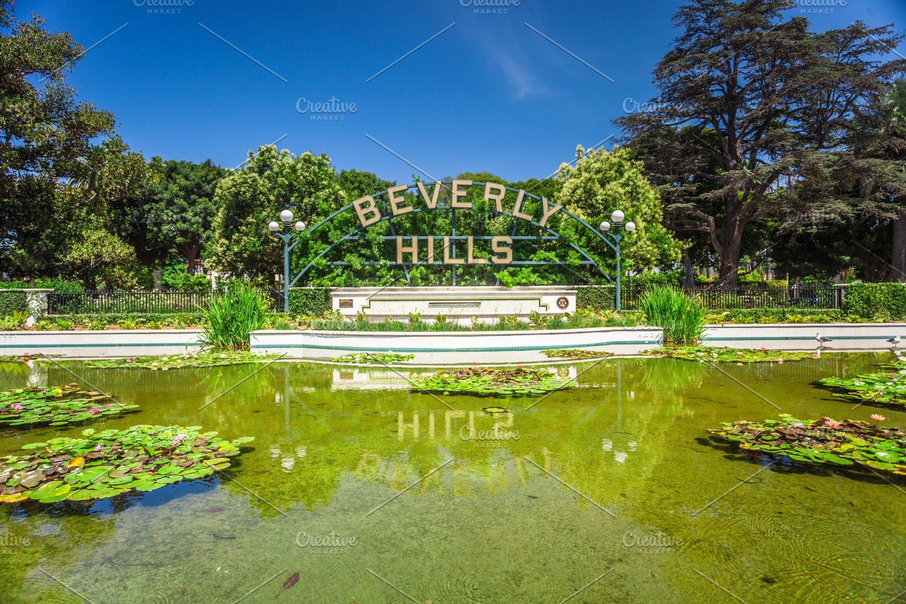 Beverly Hills Pond With Lotus Flower Photos Creative Market