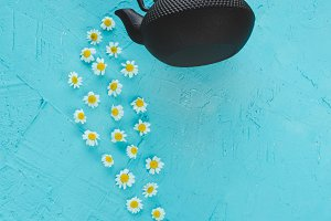 Composition of camomile flowers