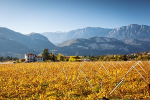 Autumn in Alps of Trentino-Alto Adig