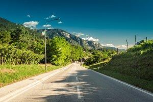 Road among green vineyards towards m