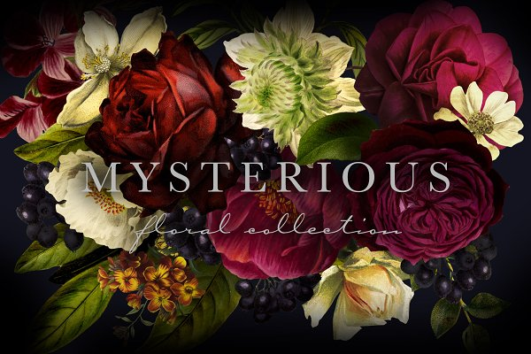 Illustrations and Illustration Products: Eclectic Anthology - Mysterious Floral Collection