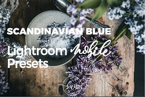 Scandinavian Lightroom Mobile Preset