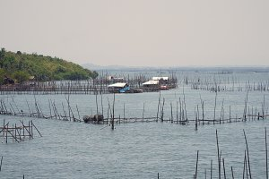 Fish farm in the sea.