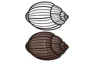 Outline seashell coloring page and