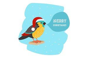 Bird with Santa hat Christmas car