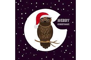 Owl with Santa hat card Christmas