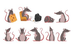 Cute grey mouse set, funny rodent
