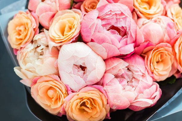 Holiday Stock Photos: MAnuta - Fresh bunch of pink peonies and rose