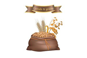 Cereals and Grains Bag Poster Vector