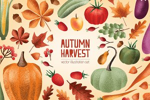 Autumn harvest textured elements