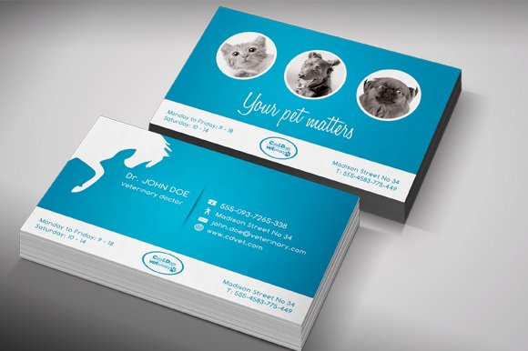 Veterinary Business Card Templates Creative Market