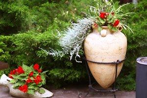 flower box with geranium flowers on
