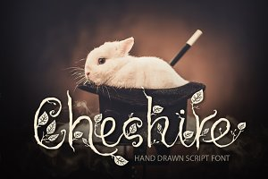 Cheshire. Magic script font.