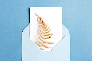 Empty card with dried fern.