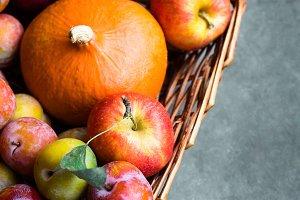 Pumpkin apples plums in basket