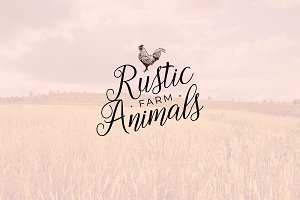 Rustic Farm Animals / Illustrations
