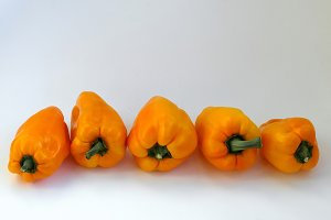 Fresh and sweet pepper bell on isola
