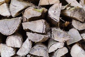 Log of wood
