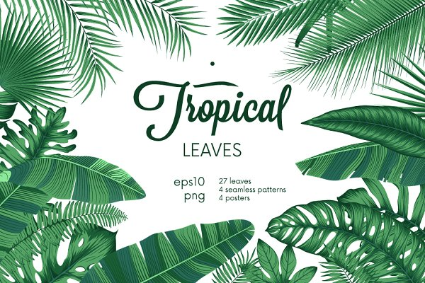 Detailed Tropical Leaves Pre Designed Illustrator Graphics Creative Market Search and find more on vippng. detailed tropical leaves pre designed