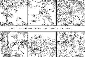 Tropical Orchid Seamless Patterns