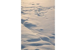 Natural winter background with