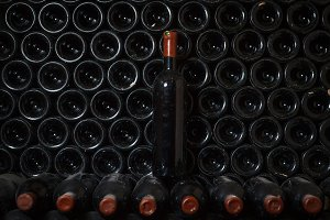 Wine bottle in a wine cellar