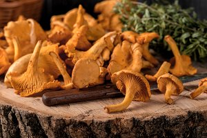 Raw wild mushrooms chanterelles in b