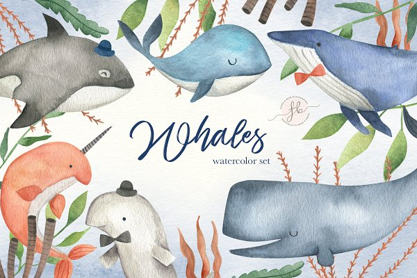 Illustrations and Illustration Products: Flora & Bear - Whales Watercolor Clipart
