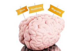 3d Brain with signboards of various