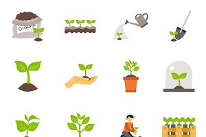 Seedling process flat icons set
