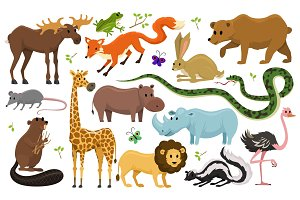 Cute wild animals for baby