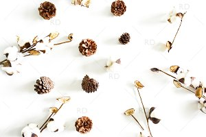 Cotton and Pinecones Styled Photo