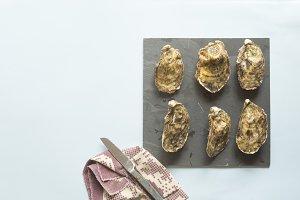 Oyster fresh  gourmet