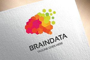 Brain Data Logo