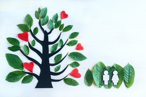Love tree. A tree from paradise.