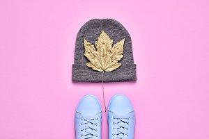 Fall Fashion Minimal Set. Autumn. Pa