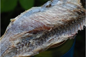 Dried fish meat macro closeup