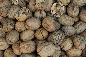 Walnuts With Shell Background