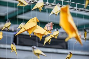 Origami yellow orange paper cranes