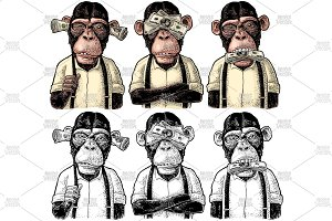Three wise monkeys. Not see, not