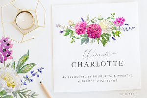Charlotte. Watercolor collection