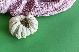 White Pumpkin On Green Background