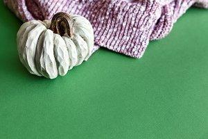 White Pumpkin For Autumn Holiday